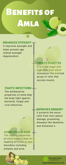 theindianmed-amla-infographic