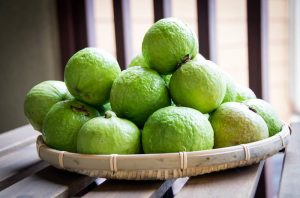 koya-guava-mediical-health-benefits