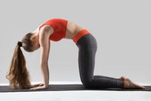 Marjariasana-Cat-Pose-benefits